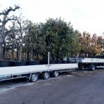Weijer WP Tridem 3500kg ladderchassis